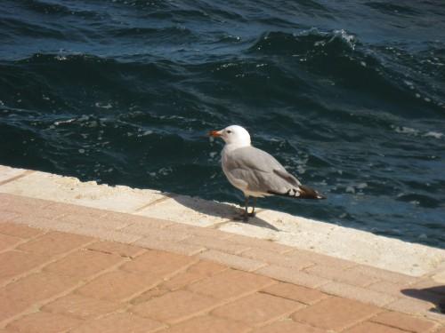 ¿De qué crisis estamos hablando? (conclusiones del curso de Menorca 2ªparte)